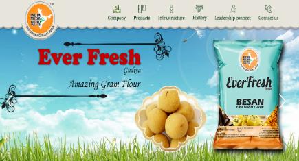 India Mega Agro Website Design Development Hih7