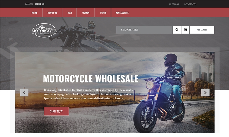 Custom Website Development Designs